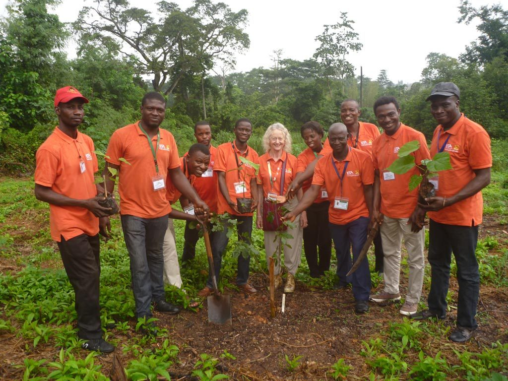 Picture of Forest Unit plants Golden Jubilee Grove