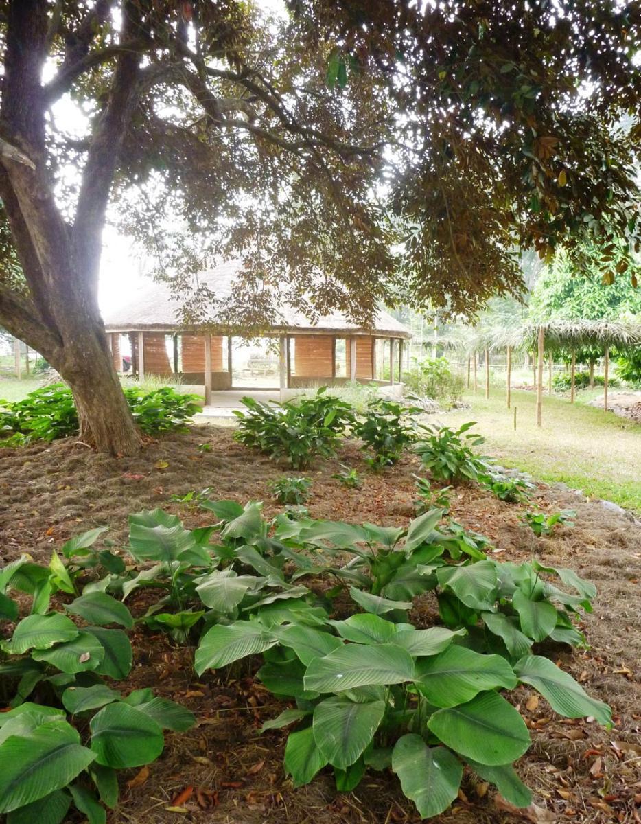 Picture of Ethnobotanical Garden